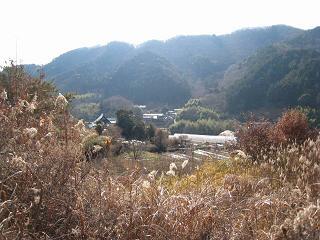 里山ハイキング02.jpg