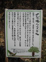 里山ハイキング05.jpg