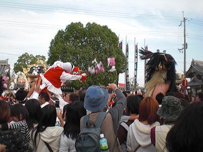 播磨祭り ボタン獅子.JPG