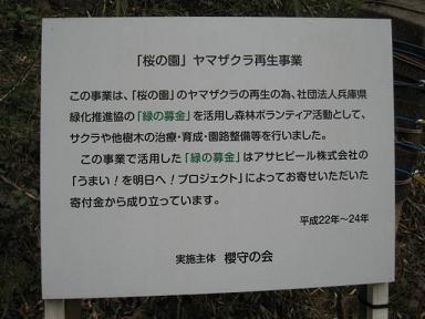宝塚 桜の園3.JPG