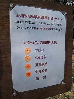 川西 サクラを守る会1.JPG