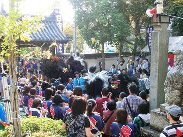 播州祭り 獅子舞.JPG