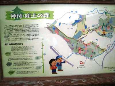 神付産土の森6.jpg
