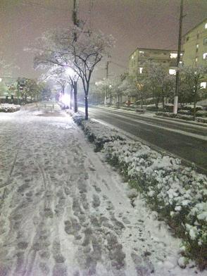 神戸雪道.JPG