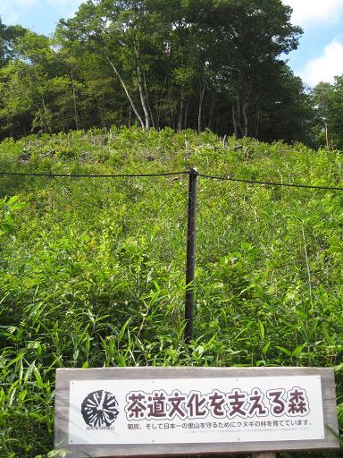 茶道文化を支える森 川西黒川2.JPG