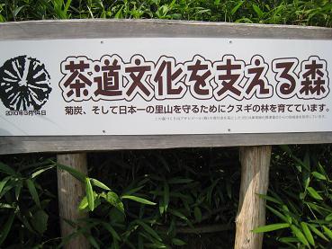 茶道文化を支える森 川西黒川.JPG