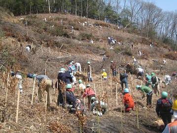 茶道文化を支える森 2010年の時ボランティア様子.JPG