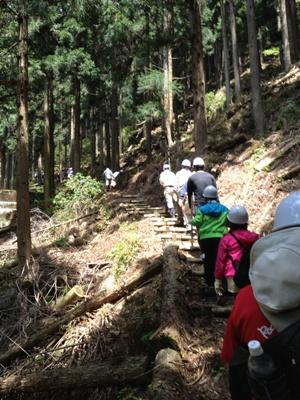 遠阪アサヒの森づくり 山道2.jpg