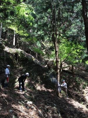 遠阪アサヒの森づくり 山道6.jpg
