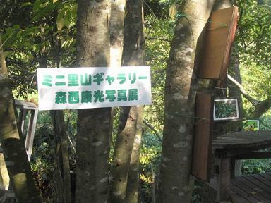 森西さん里山写真ギャラリー.jpg